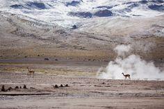 San Pedro de Atacama (Foto: Divulgação)