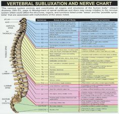Nerve chart that provides a great explanation as to how the alignment of your vertebrae directly affects your overall health.  Sometimes we forget that our spine houses a good portion of our central nervous system.  Posture, posture, posture!!!  #spine #chiropractor #nerve #subluxation #chart #chiropractic #posture