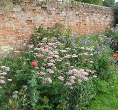 Priory Garden East Anglia England