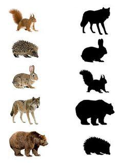 (2016-12) Vilde dyr