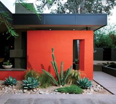 Easy Desert Landscaping Tips That Will Help You Design A Beautiful Yard Succulent Landscaping, Front Yard Landscaping, Backyard Landscaping, Landscaping Melbourne, Hydrangea Landscaping, Tropical Landscaping, Bright Walls, Red Walls, Murs Clairs