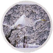 Great Egret Flight Landing At Dam Round Beach Towel by Bill And Deb Hayes