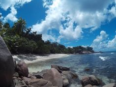 Perfect day for a sea turtle track survey with our volunteers at Anse Mandarin on Curieuse Island! Wildlife Conservation, Volunteers, Seychelles, United Kingdom, Turtle, National Parks, Track, Sea, Island