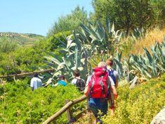 Wandelen op Kreta Hani, November, Island, Crete Greece, Vacation, November Born, Islands