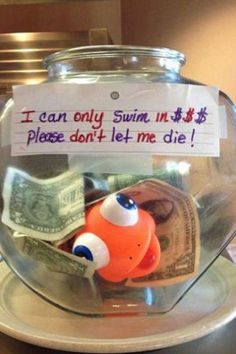 """""""I can only swim in $$$ please don't let me die!"""""""