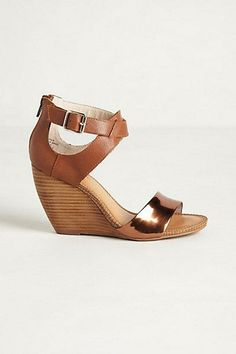 Ether Wedges / Anthro
