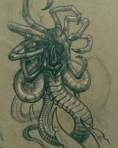 Alien Facehugger by David Ekstrom Arte Alien, Alien Art, Predator Movie, Alien Vs Predator, Giger Art, Hr Giger, Giger Alien, Alien Tattoo, Alien Queen