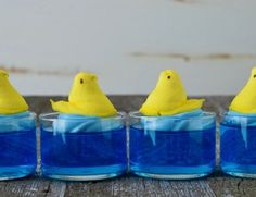 Swimming Jello Peeps | Swim with the Peeps: An Easy Easter Jell-O Treat