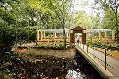 Jardim Botânico do Recife está entre os melhores do Brasil