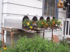 Old mailbox planters