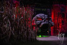 Completed entrance of the Kersey Valley SpookyWoods. Artists used common building materials, SpiderLath and a stucco sprayer to form stucco into a creepy old looking skull castle.