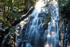 The 5 hikes that every Pacific Northwesterner needs to do:   How many have you checked off your list?  [photo of Ramona Falls courtesy of Nickay3111 via Flickr]