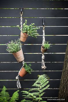 Create a Chic Vertical Garden is part of Hanging garden DIY Special projects editor Megan Pflug shows us how to turn any terracotta pot into a - Hanging Succulents, Hanging Pots, Diy Hanging, Succulents Garden, Planting Flowers, Hanging Gardens, Jardim Vertical Diy, Vertical Garden Diy, Vertical Gardens