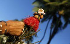 Hawaii: A Hawaiian Santa ornament sits atop a Christmas tree being decorated by Staci Kennedy, of Cape Cod, Massachusetts, on Waikiki Beach ...