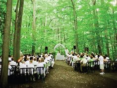 Kortright Centre, Forest Path Ceremony This is what I want. Wedding Venues Texas, Toronto Wedding, Wedding Locations, Wedding Events, Wedding Ideas, Wedding Planning, Wedding Inspiration, Event Planning, Wedding Stuff