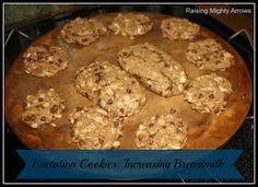 Raising Mighty Arrows: Lactation Cookies: Increasing Breastmilk