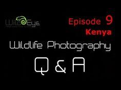 In this new series of videos Wild Eye's Gerry van der Walt answers your wildlife photography questions! Kenya Travel, Wild Eyes, Episode 5, Wildlife Photography, Nature Photography