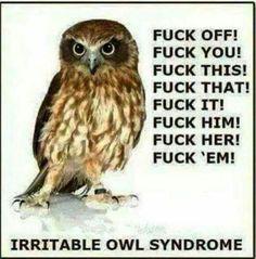 Hahaha! Forgive the expletive