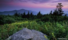 Mountains-to-Sea Trail.  I want to do this so bad!  I have been on parts of the MTS while hiking on other trails in NC High Country.  I would love to hike the entire trail.