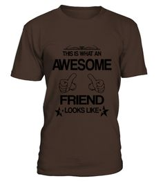 This-Is-What-An-Awesome-Friend-Looks-Like-T-Shirts (Copy)