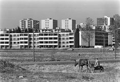 Koivukylä in 1981