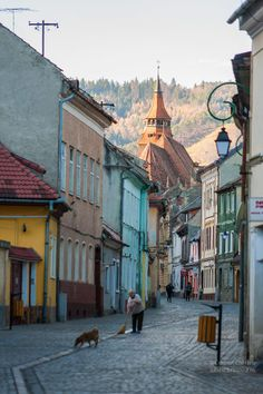 Brasov, Romania Beautiful Places In The World, Oh The Places You'll Go, Places To Travel, Amazing Places, Interrail Europe, Serbia And Montenegro, Brasov Romania, Visit Romania, City Streets