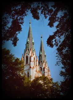 cathedral of st john the baptist.  savannah, ga I lived two doors down from this Church when I lived in Savannah and the bells rang from sun up on the hour to sun down.