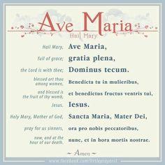 The Ave Maria in English and Latin. Prayers To Mary, Novena Prayers, Catholic Prayers, Hail Mary Prayer Catholic, Sending Prayers, Short Prayers, Catholic Saints, Catholic Beliefs, Catholic Quotes