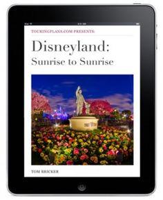 happiest place, disney park, walt disney, disney dream, parks, disney obsess, magic kingdom, disneyland, earth