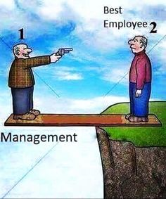 Company wisdom