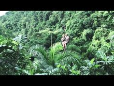 This video is about Tree House Samana, Les Cascades, Souffle, Plein Air, Youtube, World, Plants, Santo Domingo, Destinations