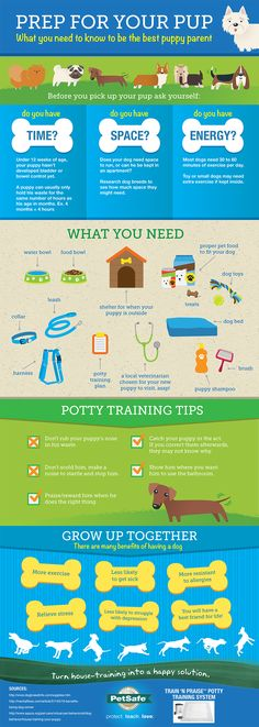 What do you need before you get a puppy? An excellent infographic breaking down the necessities for any pet owner. #puppylove #prep