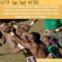 The most violent sport in the world - WTF fun facts