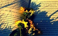 http://wallpaperscraft.com/image/books_flowers_paper_shadow_54559_1680x1050.jpg