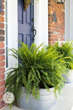 Landscaping Software - Offering Early View of Completed Project Easy Spring Porch Refresh Ideas For Taking What You Already Have And Making It Look New. Spending Friendly Ways To Refresh Your Outdoor Space Entrada Frontal, Galvanized Decor, Galvanized Buckets, Galvanized Tub Planter, Decks And Porches, Front Porches, Front Porch Flowers, Planters For Front Porch, Modern Farmhouse Exterior
