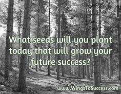 Keep pushing through the swamp. Hack back those vines and weeds that are attempting to block your route to success. Impulse, Critical Thinking Skills, Champions, Jealousy, Pretty Pictures, Live For Yourself, The Great Outdoors, Sustainability, Success