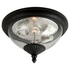Sea Gull 2 Light Outdoor Flush Mount -