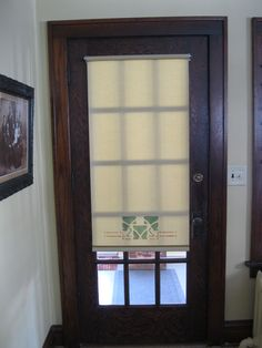 Glass front door  Window coverings and Door window treatments