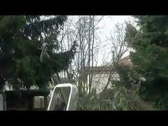 Couper des branches sans aucun danger