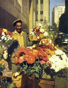 A flower seller lower Parliament street