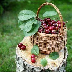 . Blackberry, Raspberry, Strawberry, Cherry Hill Park, Cherries Jubilee, Cherry Recipes, Acai Berry, Sweet Cherries, Cherry Tree