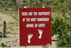 These are the footprints of the most dangerous animal on earth. Dog Quotes, Animal Quotes, Reasons To Go Vegan, Dangerous Animals, Public Display, Quote Citation, Vegan Animals, French Quotes, Funny Signs