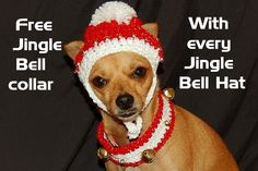 Jingle Bell hats and matching collars.