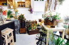 """Flower-shop """"Floral Magic"""" #flowershop #spaces #places #shop #flower #harpal #harrpal"""