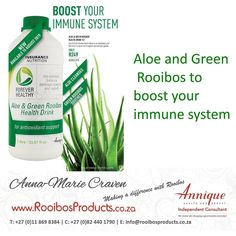 Rooibos Products is an independent Annique Health an Beauty Consultant.Delivering countrywide and making a difference with Rooibos Immune System, Aloe, Health And Beauty, Cleanse, Nutrition, Drinks, Products, Drinking, Drink