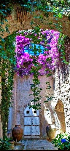 Arch of bougainvillea at Castello Aragonese in Ischia, Italy The Places Youll Go, Places To Go, Beautiful World, Beautiful Places, Beautiful Flowers, Gorgeous Gorgeous, Absolutely Gorgeous, Simply Beautiful, Beautiful Gardens