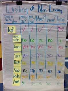 living or non-living kindy science org. chart
