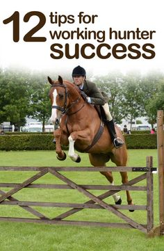 Find out what are the judges looking for in a working hunter class with our expert tips from those in the know at http://www.horseandhound.co.uk/features/tips-for-working-hunter-success-474430#hkuTJcs7dF1UHfPo.99 #workinghunter #horses