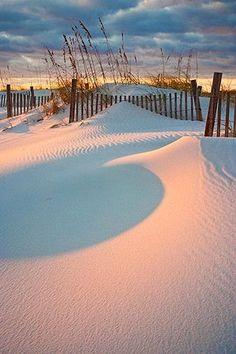 Dunes at sunset, Orange Beach, Alabama