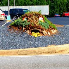 Our new Dragon feature at the second parking lot. Intown Ace Hardware Decatur.